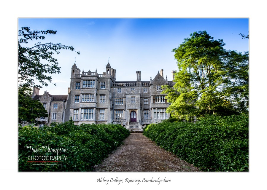 Abbey college 1 - Copy